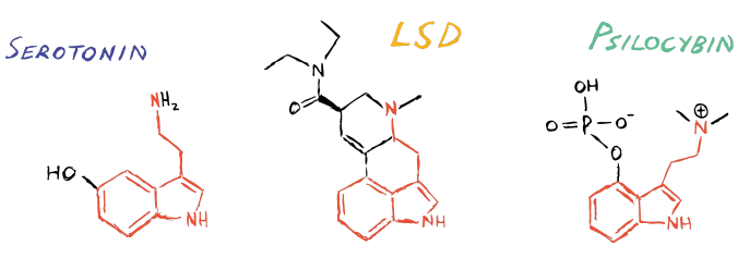 Sero LSD Psilo RED