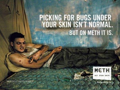 methad1-pickingbugs